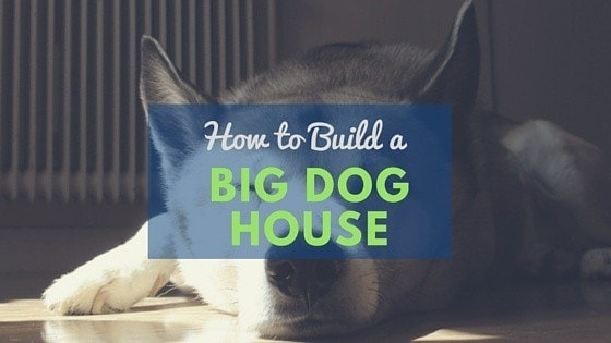 Dog house plans 2 large dogs