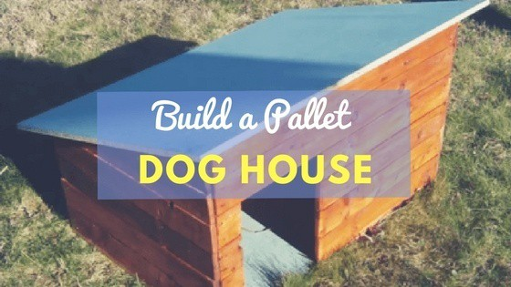 How To Build A Dog House Out Of Pallets Step By Step