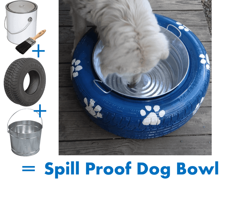 spill proof dog bowl