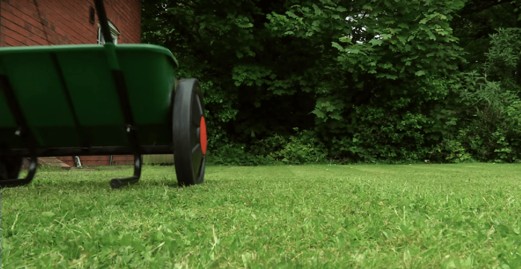 Best Weed Killer for Lawns (July 2019) - Get Rid of Weeds