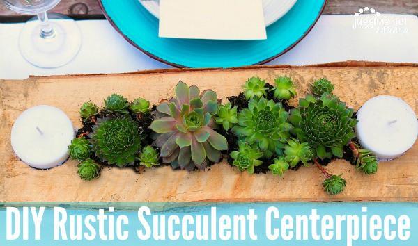 Beautiful Succulent Centerpiece