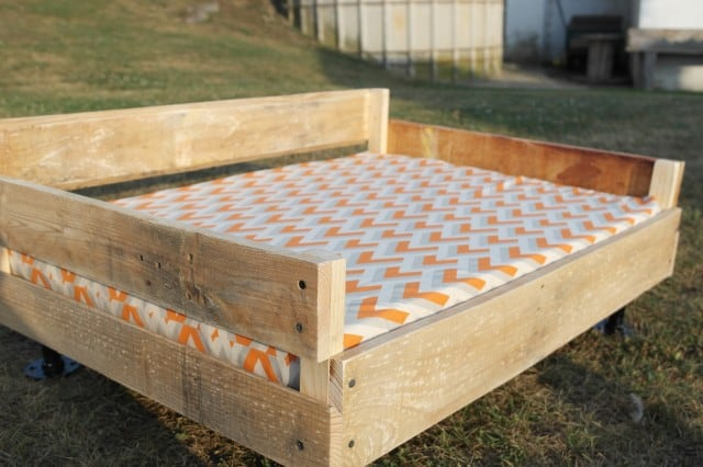 Pallet & Pipe Dog Bed Tutorial