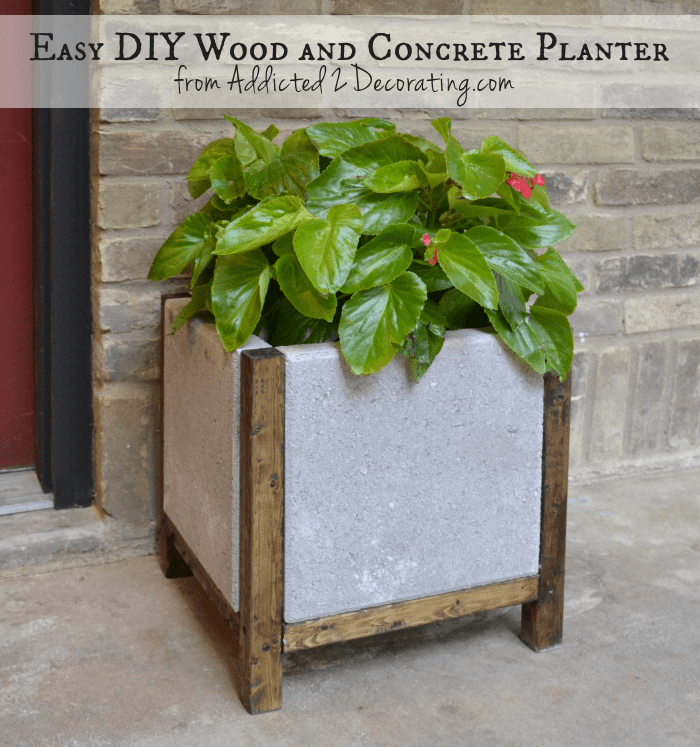 Simple Concrete and Wood Planter