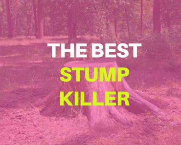 best stump killer
