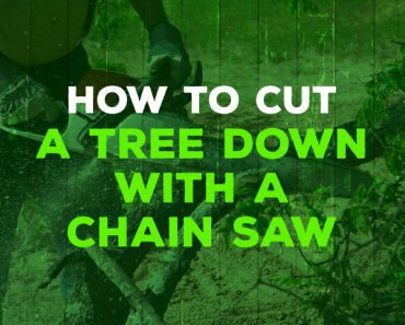 how to cut a tree down with a chainsaw