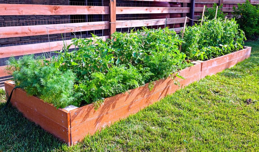 trough style garden