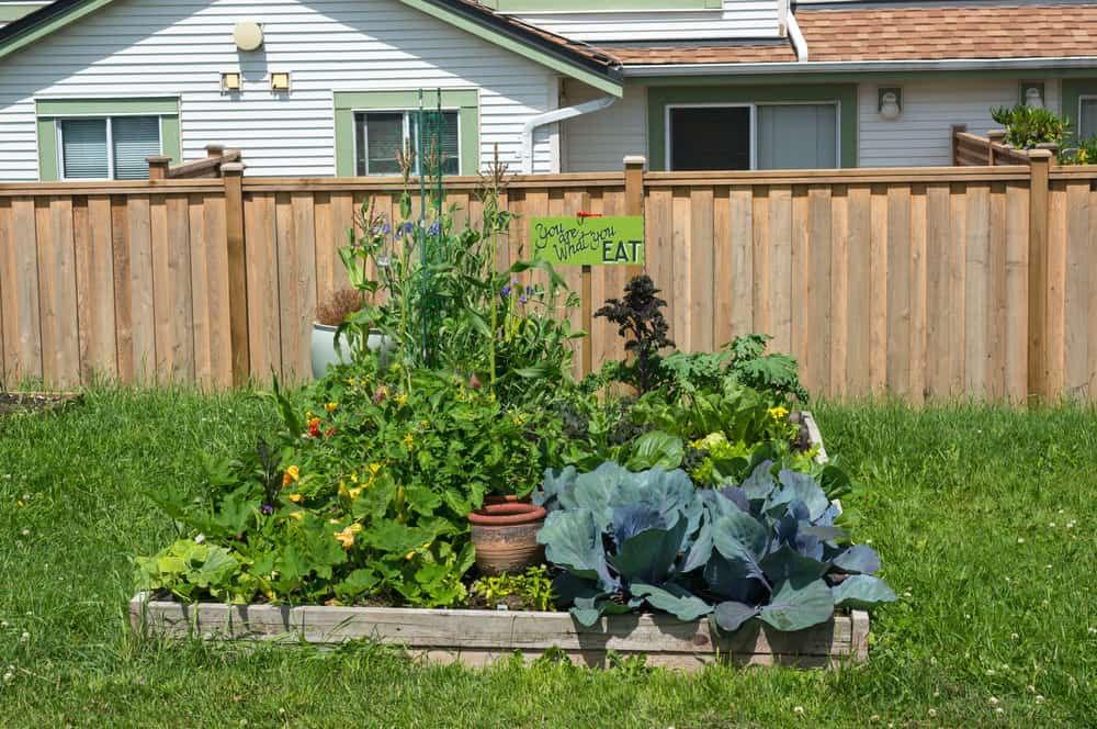 low two plank garden