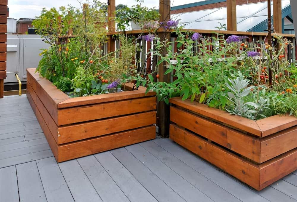 negative spacedeck garden
