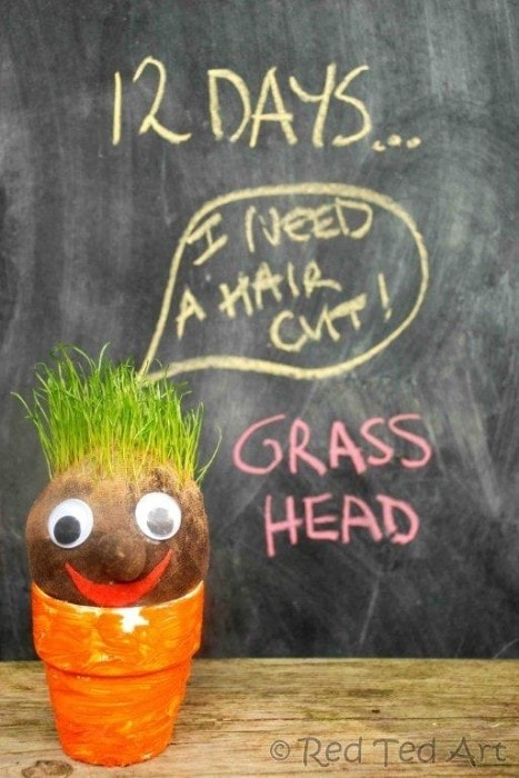 Grass Head I can promise your child is going to love cutting the hair on your homemade grass head!  Each handmade grass head will be different so you can have a variety of adorable plants filling your space. thesawguy.com