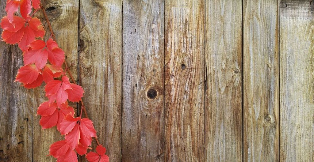 types of wood fences_1