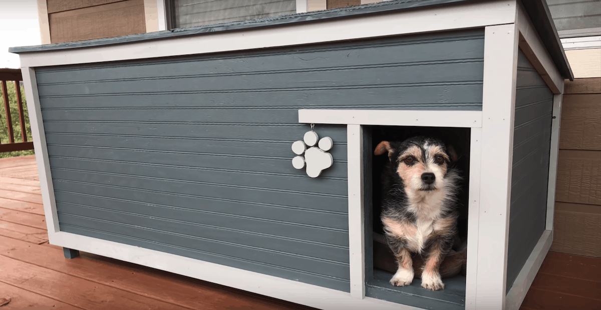 How To Build A Dog House Out Of Pallets Step By Step Tutorial The Saw Guy