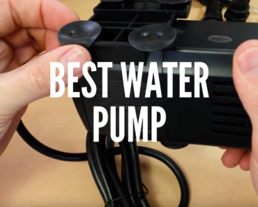 Best Water Pump