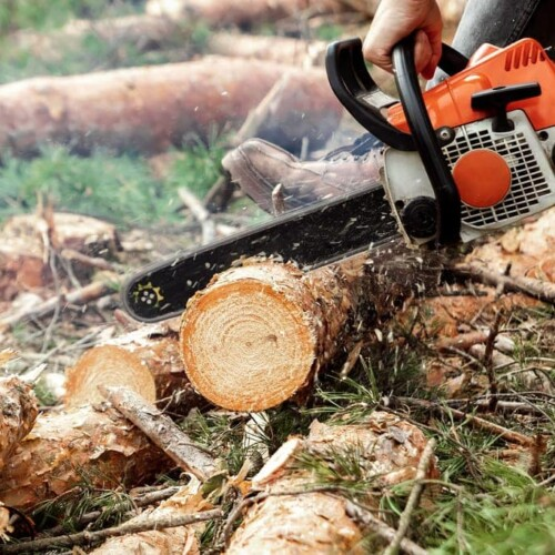 Chainsaw Teeth Sharpener - When to Use